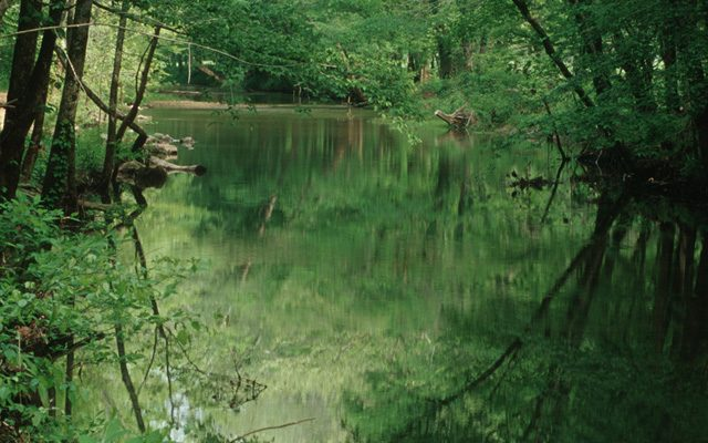 Headwaters of Paint Rock River